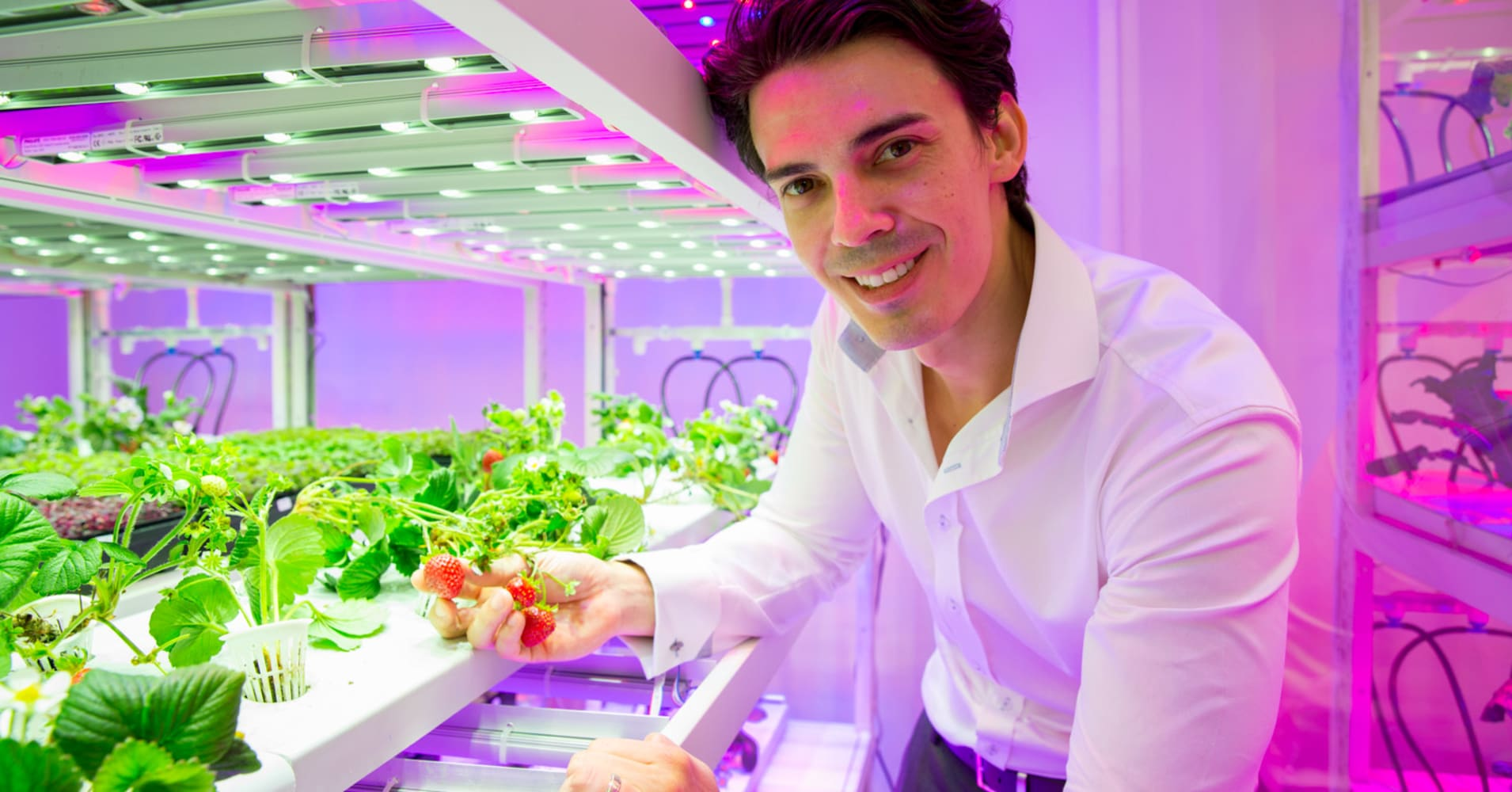 How a Facebook post drove a banker to launch a multimillion-dollar vertical farming business