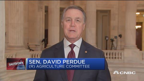 Sen. David Perdue on shutdown: Both parties are being 'totally irresponsible'