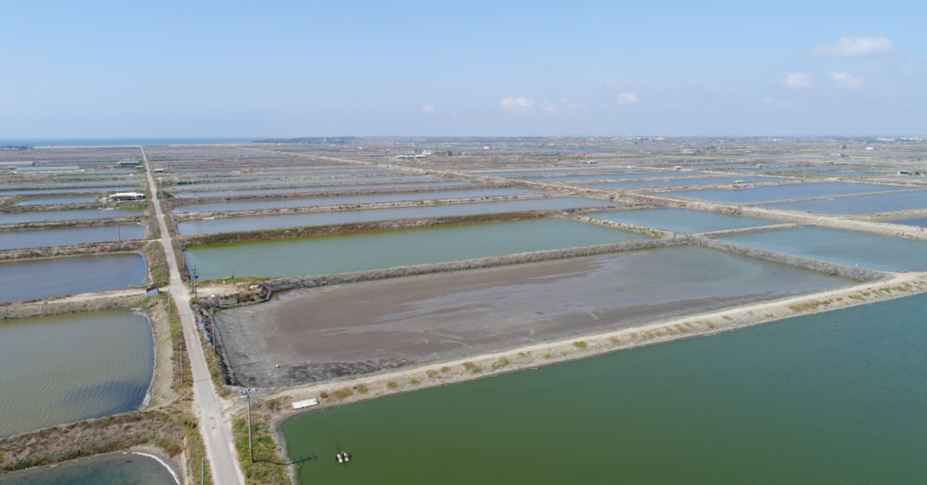 Google is building a solar power project above fishing ponds in Taiwan, its first in Asia