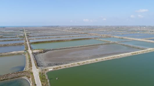 The site of Google's planned solar power project in Taiwan which will include the use of poles hoisting solar panels above fishing ponds.
