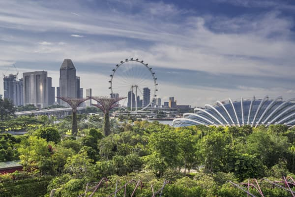 Singapore's skyline emerges in the background of the city's iconic Gardens by the Bay.