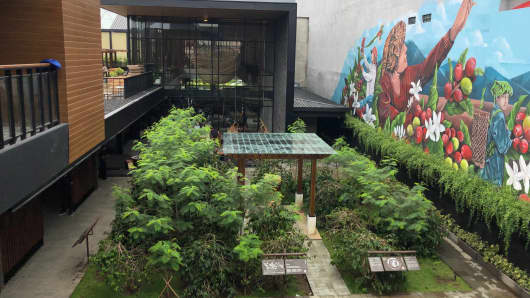Starbucks Reserve Dewata is the world's only Starbucks with its own coffee farm.