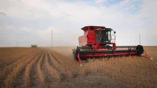 Greg Porth harvests soybeans on October 2, 2013 near Worthington, Minnesota.
