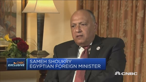 Egypt foreign minister: We're seeing the first returns of Egypt reforms