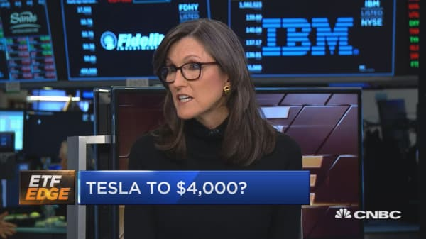 This is where Tesla heads next, top fund manager says