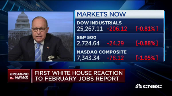Larry Kudlow: February jobs number is very 'flukey'