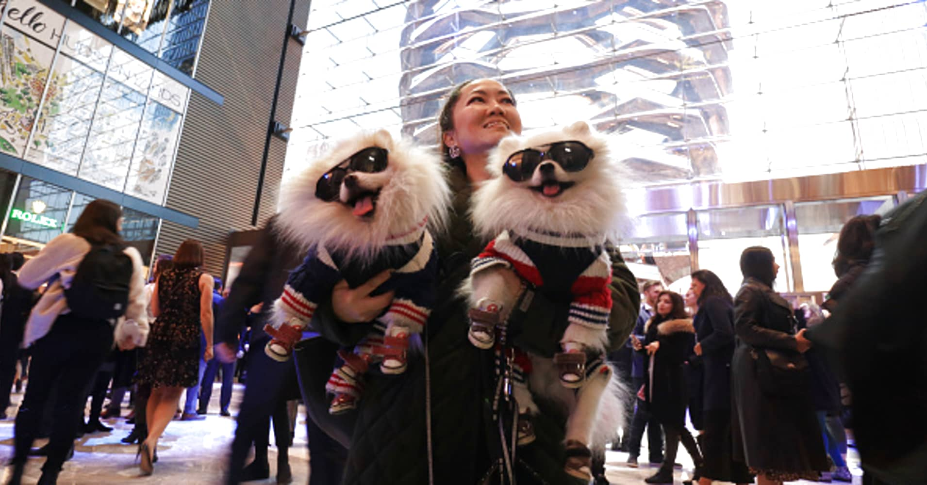 Designer Chong Cha holds her dogs Zuzu and Zunky while attending a preview event at the Shops at Hudson Yards on March 14, 2019 in New York City.