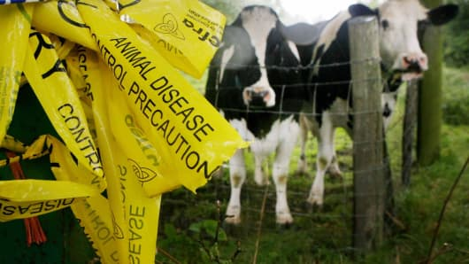 A cattle farm west of Surrey, England being investigated for a foot-and-mouth outbreak in August of 2007. A bigger epidemic struck Britain's agriculture industry in 2001.