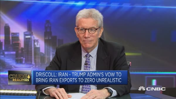 Obliteration of Iranian oil exports is 'unrealistic': Srategist