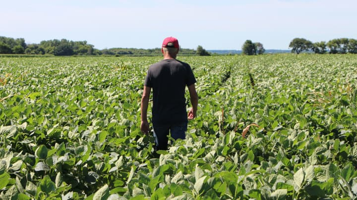 Trade wars, climate change plunge the family farm into crisis. Is it an endangered American institution?