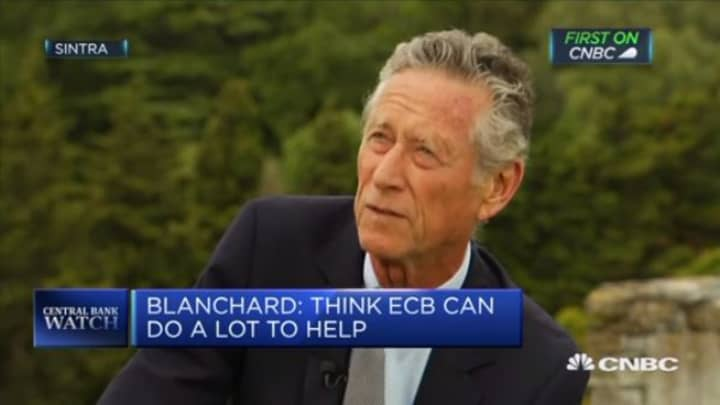ECB can't fight a recession on its own, says former IMF economist