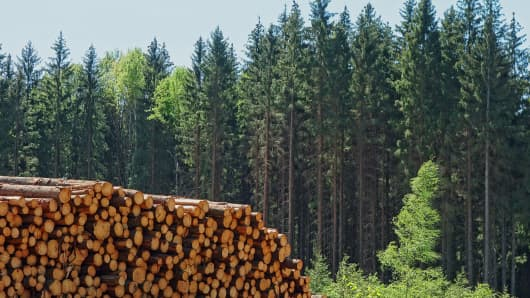 The Biodiversity Business