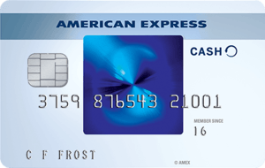 Blue Cash Everyday® Card